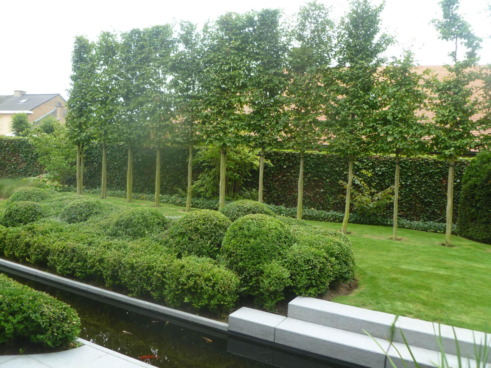 6 tips voor een voor wie denkt aan een nieuwe tuin - Maak een eigentijdse tuin aan ...